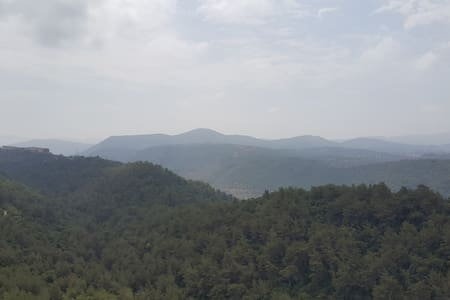 iskandarani residence