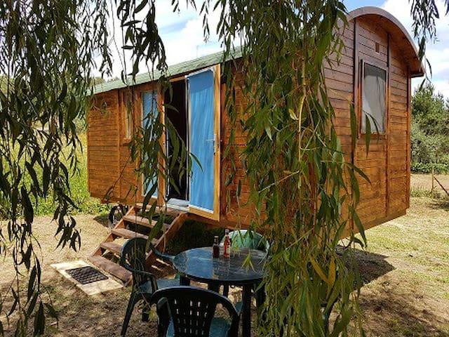 Tiny House Rio Tejo