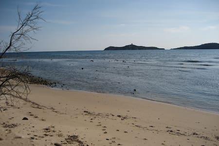 Bambou accès direct mer et plage du jardin - Zonza
