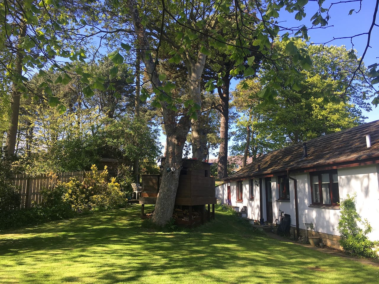 Midwood Lodge with large secluded garden and tree house, bike shed and private parking.