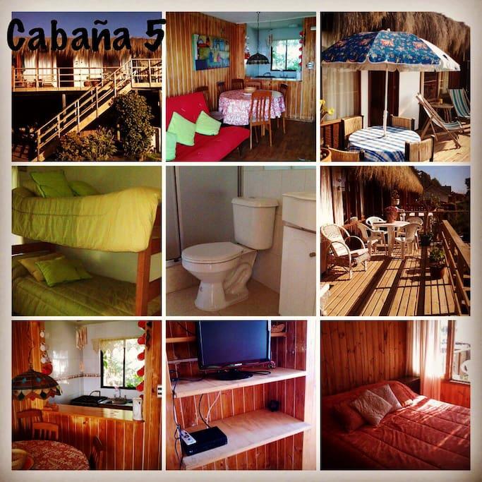 MAITENCILLO ARRIENDO CABAÑA N°5:Ubicada en condominio privado, frente a playa Abanico, la mejor playa para el surfer de Maitencillo. CABAÑA N°5:  Capacidad para 6 personas. 2 dormitorios, 1 baño, living-comedor-cocina americana, DIRECTV + Termopanel,  1 estacionamiento.  Distribución: • Dormitorio 1: cama 2 plazas.  • Dormitorio 2: camarote de 2 camas • Living-Comedor: Futón 2 plazas. DIRECTV • Estacionamiento interior para 1 auto