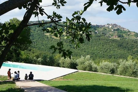 Castagnoli , great views, pool , olive groves - Ciciano