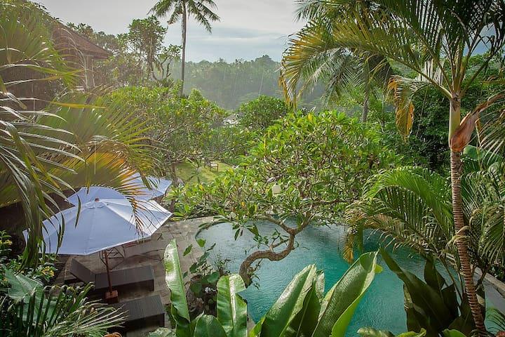 Sayan Terrace Tropical Jungle View Villa - Ubud - Rumah