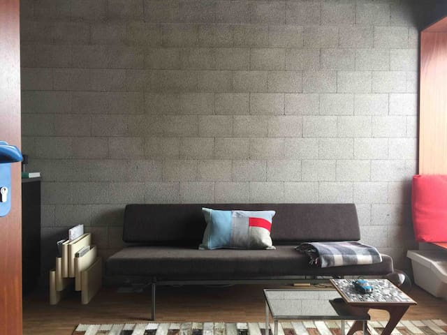 The Living with sofa bed