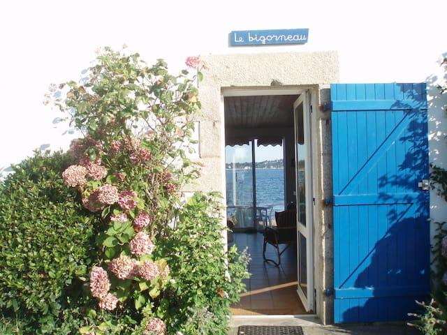 Beau studio bord de mer - Ile d'Arz  - House