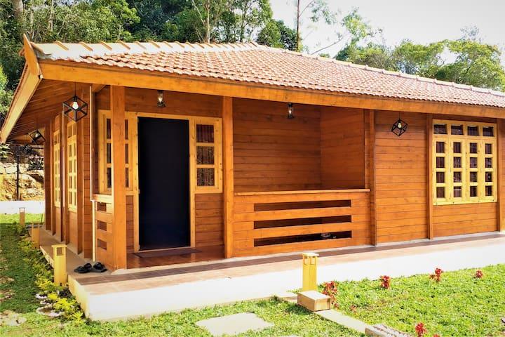 Wooden Villa - WOW Bison Woods