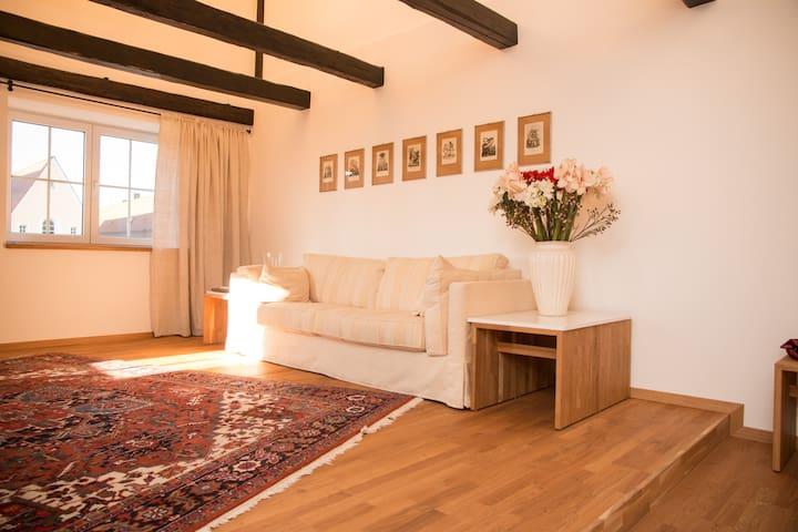 Stilvolle Altbaudachwohnung in bester Lage - Weiden in der Oberpfalz - Apartemen