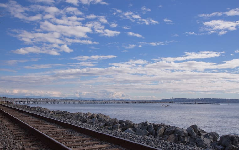 Breathtaking ocean view 2bdm APT - White Rock - Daire