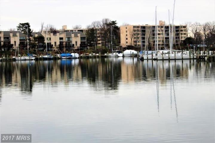 Cozy Annapolis Penthouse Apartment - Annapolis - Condo