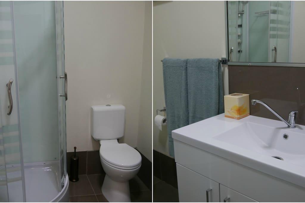 Separate bathroom off bedroom