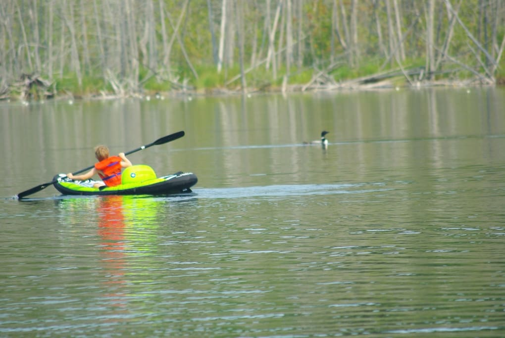 both lakes are teeming with fish and beautiful wildlife. No motors allowed other than electric
