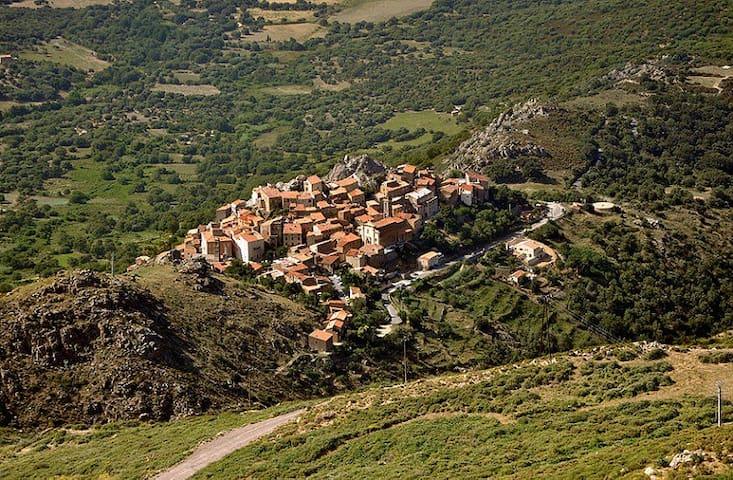 Village typique: Spéloncato se situe en position centrale entre mer & montagnes