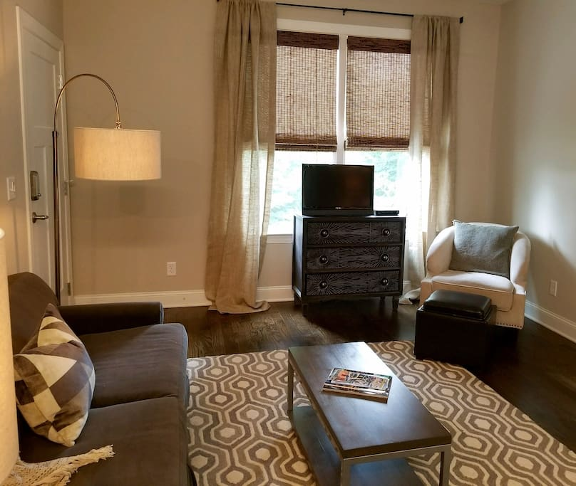 Ample living space with TV, Wifi, and pull out full sofa.