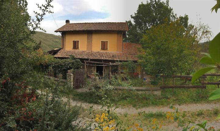 Casetta nel Bosco in Oltrepo Pavese