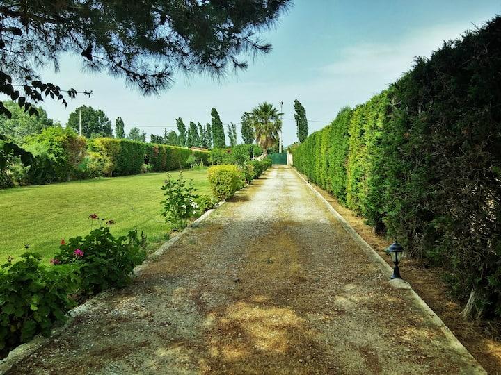 Private Marathon GardenHouse