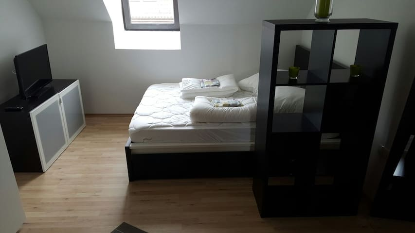 1 Room Appartement in City awesome :-) - Kaiserslautern - Apartament
