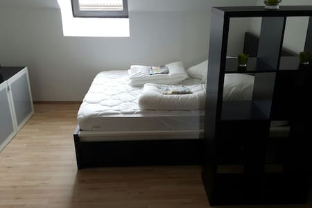 1 Room Appartement in City awesome :-) - Kaiserslautern - Departamento