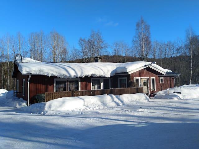 Kolin Rinne