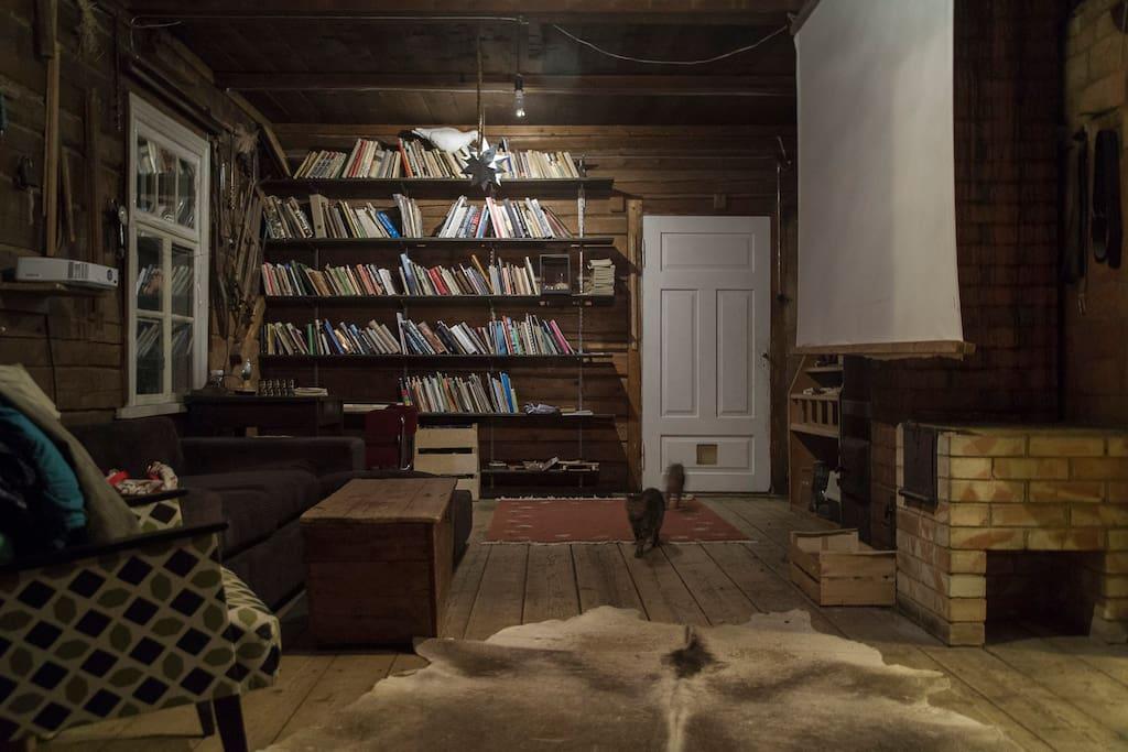 Library, study and cinema