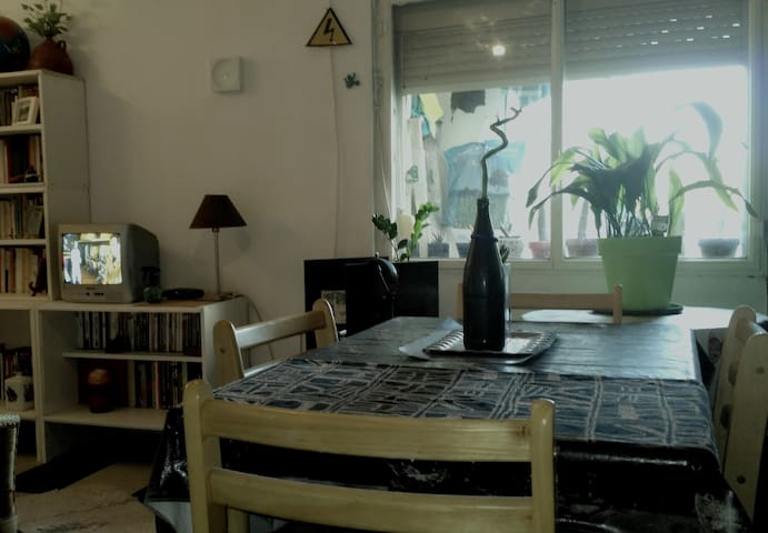 "Room in Apartment. ""Botanic Garden"" Zone - Cordoba - Appartement"