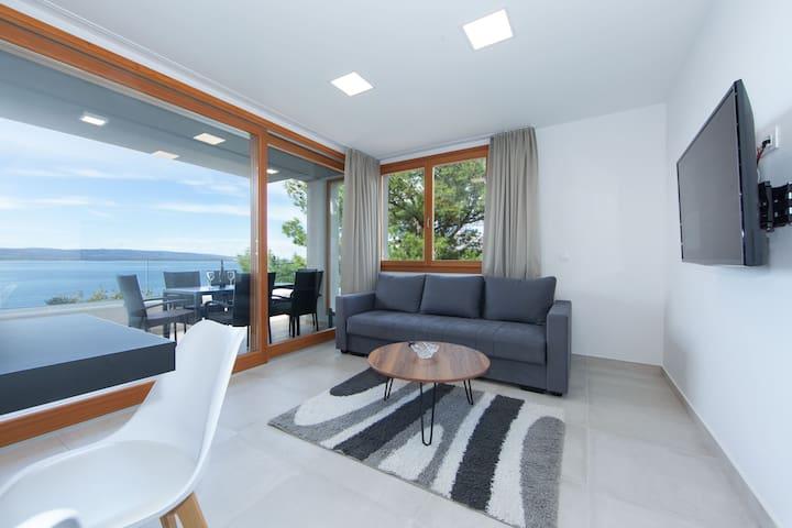Apartments Bikin AP 11 4+2