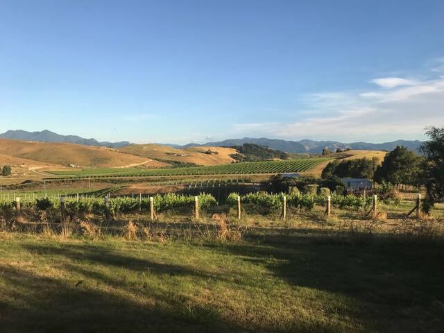 Vineyard setting mountain views - no cleaning fee