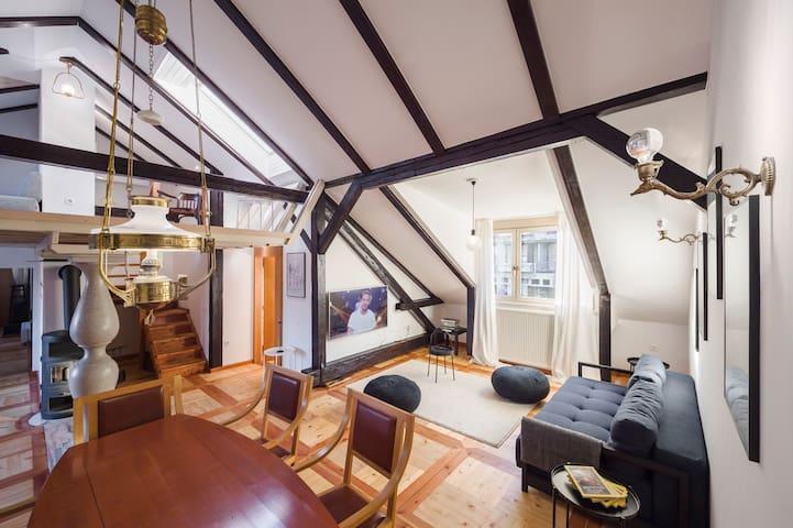 Fine Three-Bedroom Gregorciceva Apartment