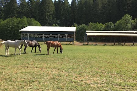 Horse Ranch in the Forest-Secluded Getaway