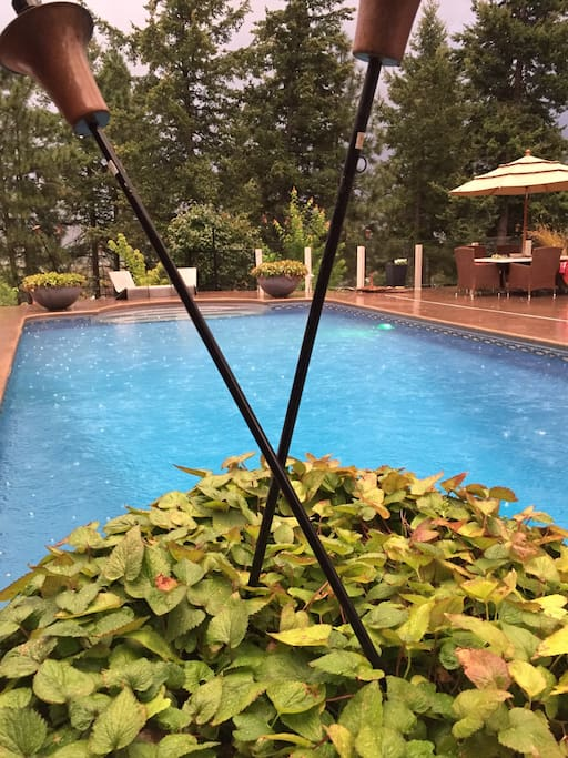 Tikki Torches at pool level, east facing