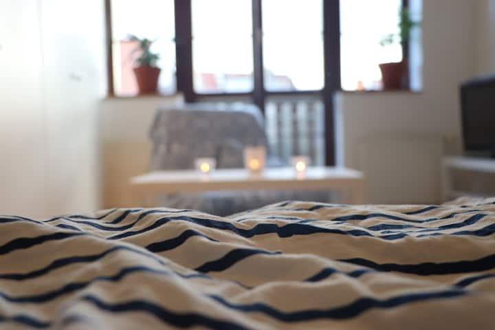 Big cozy spacious room near Prague centre