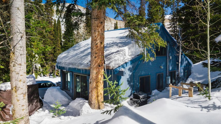 The Blue Pine Cabin