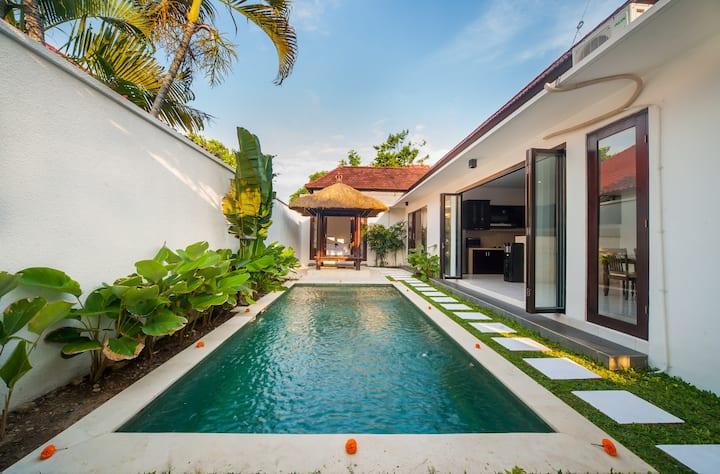 """""""75% OFF"""" 3 BR Villa Clover, Sanur w/ private pool"""