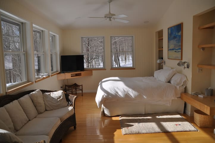 The master bedroom extends across the entire southern side of the house.  There are 10 windows, with an extraordinary view of the mountains.  The bed is a queen size bed.  There is a flat screen television, and an antique wicker sofa.