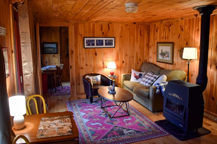Cozy,  pet-friendly cabin with a gorgeous view
