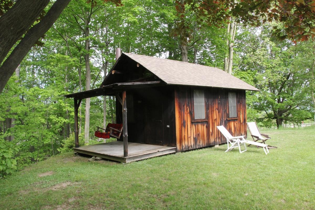 Cabins In Watkins Glen