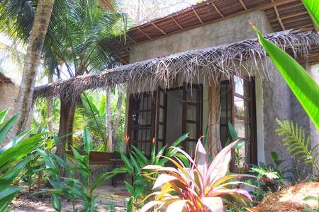 Dreamtime Kurumba Cabana + Pool
