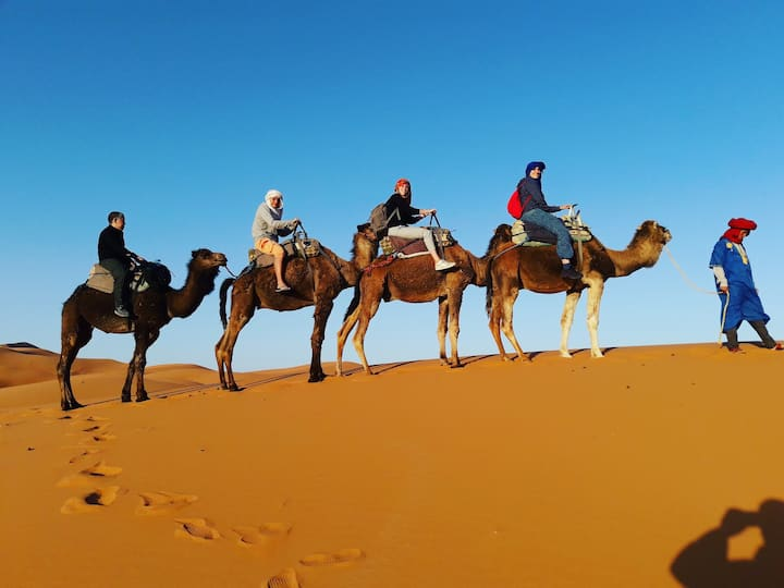 Camel Tours to the Desert Camp