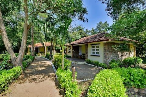 Bandhavgarh National Park-best budget cottages