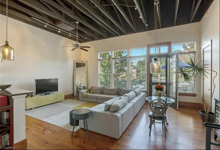 Luxury Arlington Lofts Downtown Townhouse