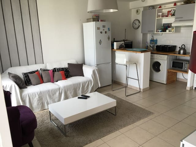 Pleasant and spacious apartment /breakfast - Bordeaux - Wohnung