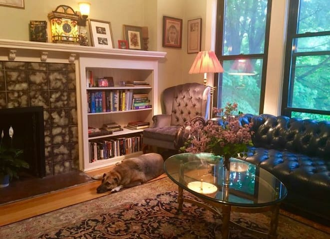 Classic Chicago Apt with quiet room - Chicago - Appartement