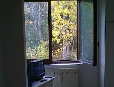 Appartamento vacanza Limone - Limone Piemonte