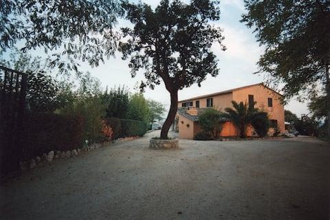Appartamenti Le Residenze A Calvi Dell'Umbria