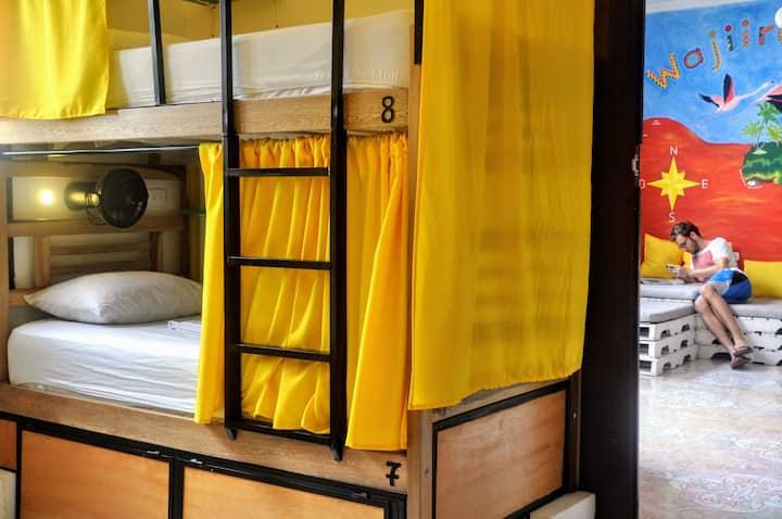 Bona Vida Hostel la Quinta - 8-bed dorm fan
