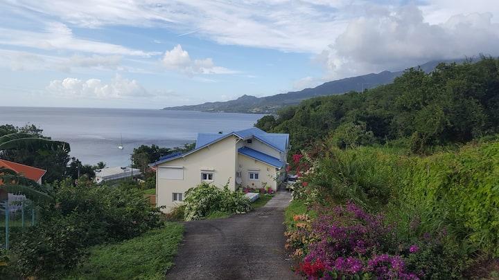 Le Carbet : appartement vue mer et montagne