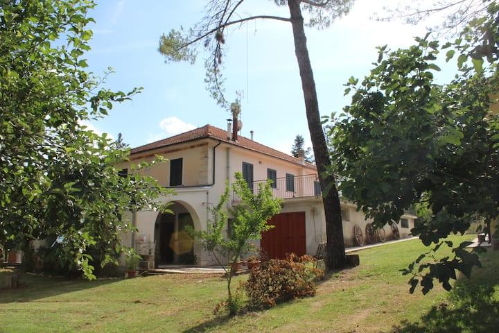 """""""Parco dei Pini"""" - Stanza privata """"Spiga di Grano"""""""