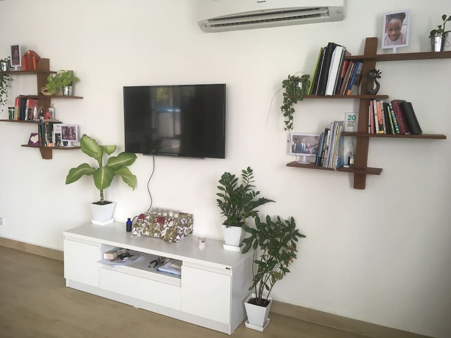 TV and living area