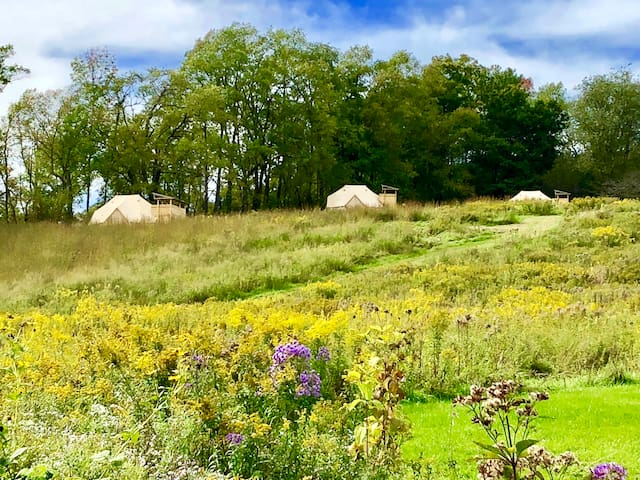Eco-Friendly Luxury Glamping in Western Catskills