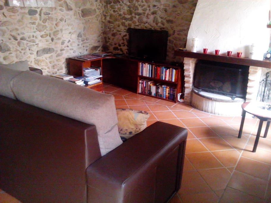 Espacio común: sala de estar con chimenea