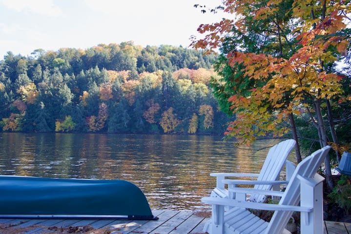 Four Seasons Waterfront Cottage near AlgonquinPark